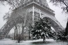 winter snow, christmas time, black n white, tower, pari, winter wonderland, winter solstice, french christmas, snow white