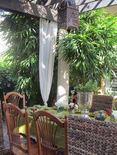 Outside - tropical - patio - miami - koolbeanzzzz