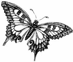 Free Vintage Digital Stamp - Pretty Butterfly