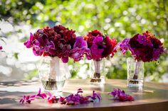 Deep purple florals for relaxed and natural wedding - photos by Catherine Hall Studios | junebugweddings.com