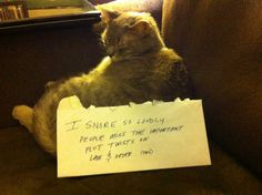 Cat Shaming...I've been waiting for this!