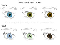 eye color illustration