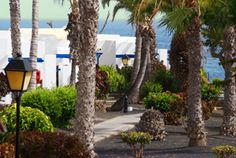 Marconfort Atlantic Gardens Bungalows are near Playa Blanca, where the white sand and crystal clear water jumps over the cliffs.