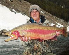 Fly fishing on pinterest for Crested butte fishing