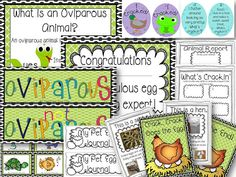 Pocket Full of Kinders!: Oviparous Unit $
