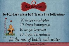 DIY flea repellent made with essential oils - made this for my pups, but added an extra 10 drops of Terrashield, 10 drops of cedarwood and 5 drops of peppermint.