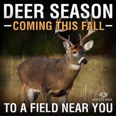 Deer Season: Coming this Fall