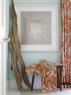 driftwood decor.....
