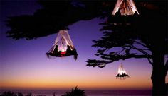 Tree Camping! Waldseilgarten offers this truly unique camping experience in the German state of Bavaria. Guests sleep in suspended tents. The portaledges are hung from a tree, high above the ground. Yeah.....no problem!!