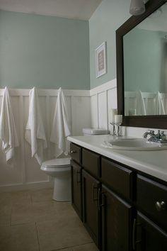 Sherwin Williams Sea Salt. Guest bathroom color