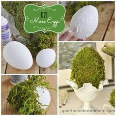 DIY Moss-Covered Eggs