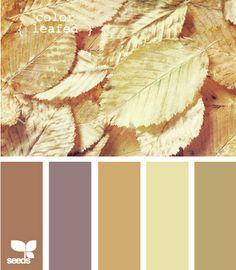 .. Color palette