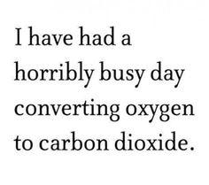My new excuse
