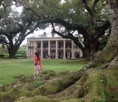 IsobellaJade Gorgeous landscape at the Oak Alley Plantation http://t.co/a2dk2xLHnG
