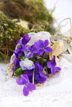 Violet bouquet ✿⊱╮