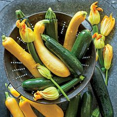Get Growing! Delicious Summer Squash | Grow fresh, tender summer squash all season long right in your own backyard. | SouthernLiving.com