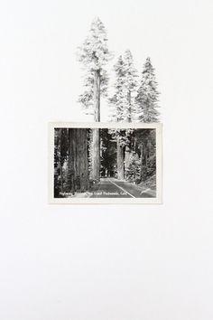 lauren, spencer studio, pencil drawings from vintage photographs
