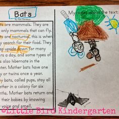 Little Bird Kindergarten Blog Post: Bats Close Read: student annotations :o)