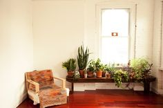 benches, potted plants, living room windows, green, bricks, hous, extra rooms, garden, style at home