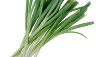 How to grow spring onions easily indoors all year long!!