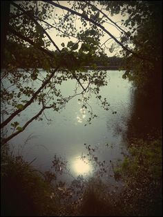 Tage des Lesens : Herbstsee