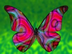 tie dye, magenta, butterflies, color, art