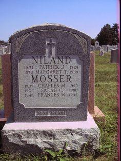Tombstone Tuesday:Patrick Niland Family #genealogy #familyhistory