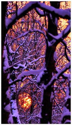 Sunset in Palmer, Alaska captured by Jim Wright - beautiful, and I hate snow.