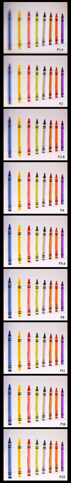 Aperture Depth of Field Comparison, Close Up