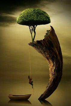 fantasy~ photomanipulation, dreams, digital art, photo manipulation, trees, tree art, bird of paradise, place, pencil art