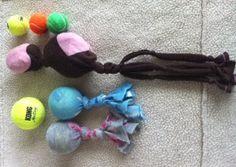 DIY dog toys!