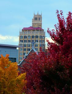 Fall in Downtown Asheville NC downtown ashevill, beauti place, nc mountain, autumn reflect, fall color, ashevill nc, north carolina, asheville nc