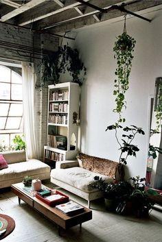{ Home Decor | plants | nature | nyc apartment }