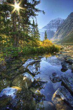 Cavell Lake , Jasper National Park , Alberta , Canada