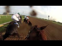 Jockey Cam: GoPro Camera on Horse Jockey. #LoneStarPark in #GrandPrairie, #Texas | #GPTexas