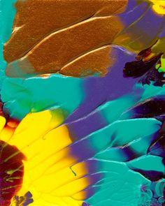 The Sunflower Painting  - The Sunflower Fine Art Print