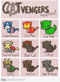 CATvengers Assemble!