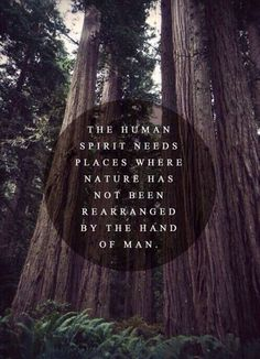 Love this nature quote