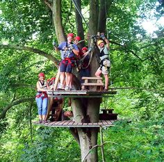 Go ziplining in Ohio to see nature from the treetops! Find a list of zip lines in Ohio here.