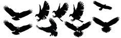 Free Eagle vector im