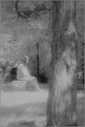 Bachelor's Grove Cemetery.  My favorite ghost picture ever.