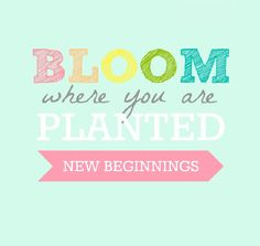 Bloom Where You are Planted New Beginnings theme.  Love it. #youngwomen