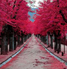 El Escorial, Madrid, Spain