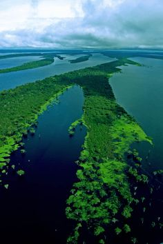 Rio Negro, the Amazon, Brazil