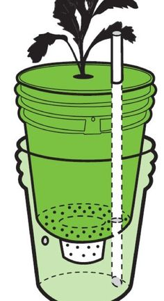 how to build a self-watering container- Urban Homestead blogspot