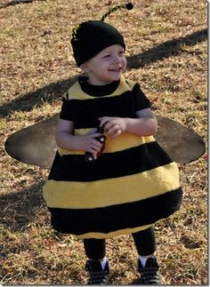 costume abeille