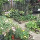 7 Secrets for a high-yield vegetable garden from organicgardening.com