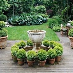 love potted boxwoods
