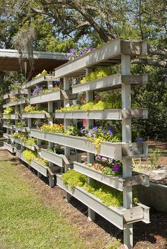 Backyard privacy screen.  Stacked planter boxes.  Small space gardens.