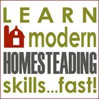 Best blog to learn Homesteading skills!
